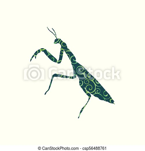 Praying Mantis Insect Spiral Pattern Color Silhouette Animal