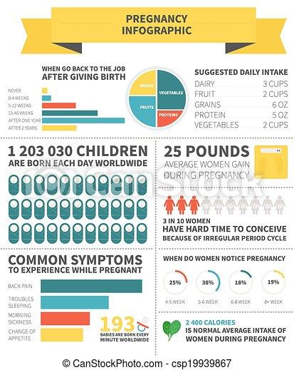 Pregnancy nutrition infographic - csp19939867