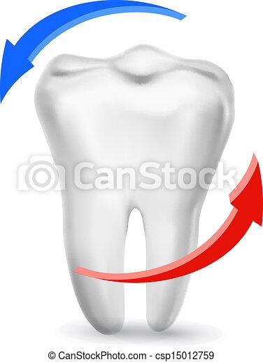 prendre, entouré, beams., dent, vector., dents, blanc, concept., soin - csp15012759