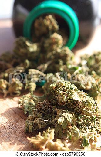 Prescripción de marihuana - csp5790356