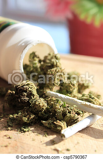 Marihuana recetada - csp5790367