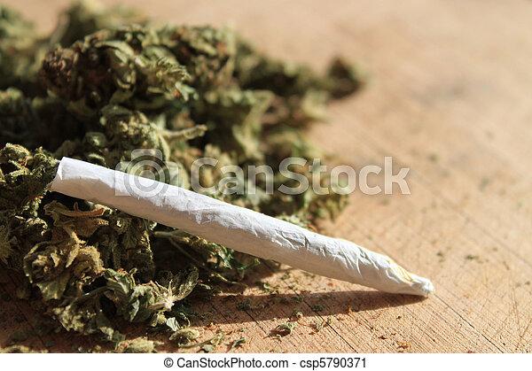 Marihuana recetada - csp5790371