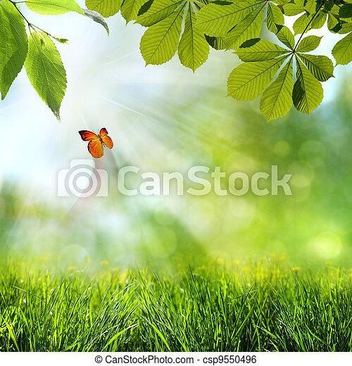 primavera, abstratos, fundos, verão - csp9550496