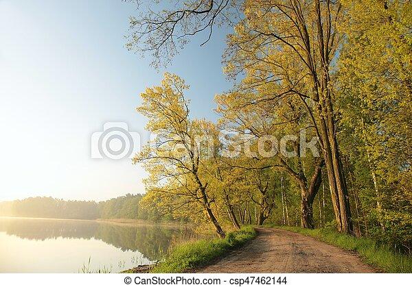 primavera, alba, paesaggio - csp47462144
