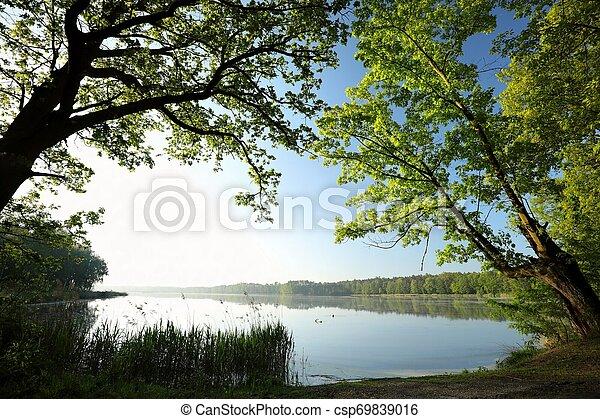 primavera, alba, paesaggio - csp69839016