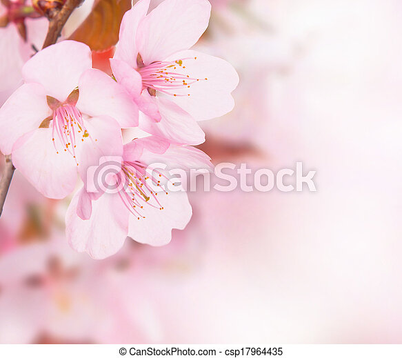 primavera, conceito - csp17964435
