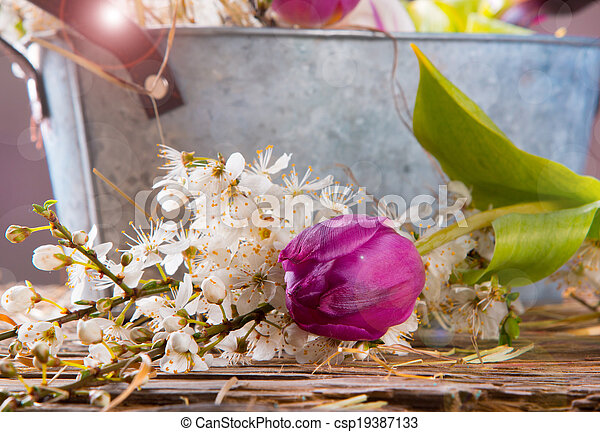 primavera, concept. - csp19387133