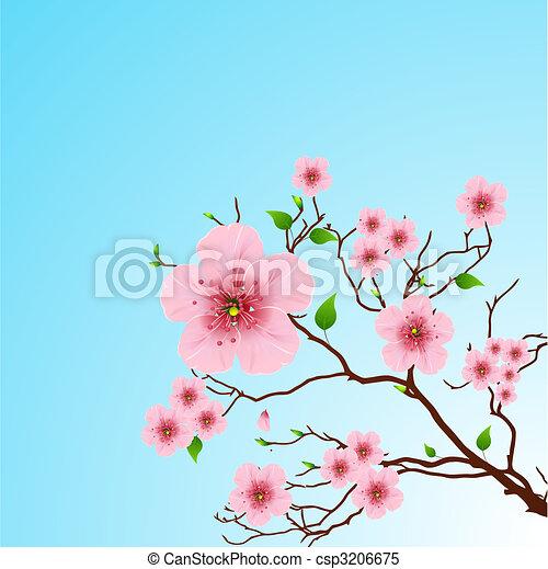 primavera, fondo, floreale - csp3206675