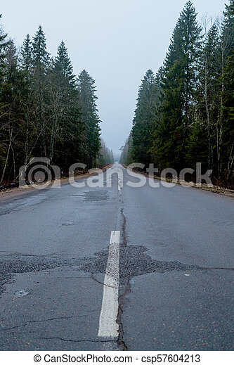 primavera, foresta, automobile, strada, foto - csp57604213
