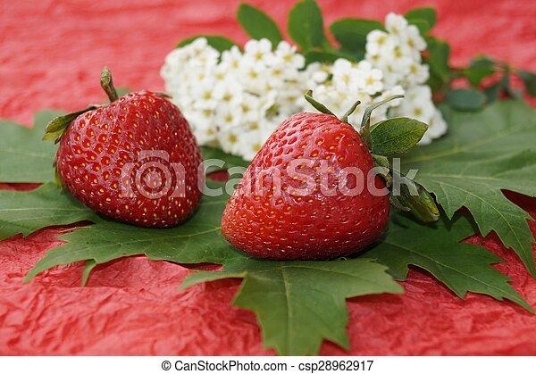 Fresas y flores de primavera - csp28962917