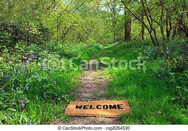 Bienvenidos al bosque de primavera horizontal - csp8264530