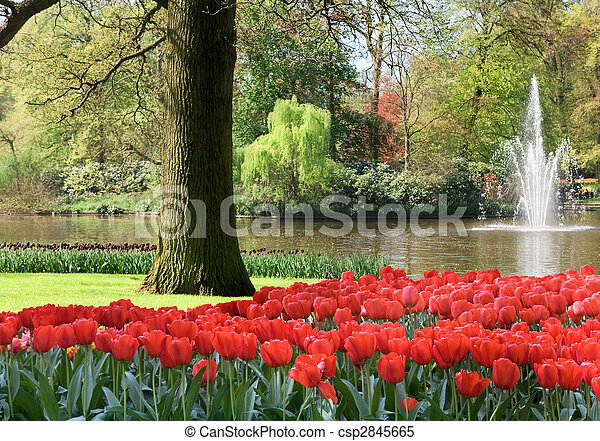 primavera, jardín - csp2845665