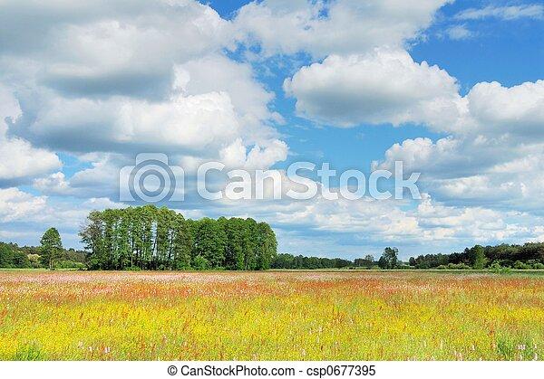 primavera, paisagem - csp0677395