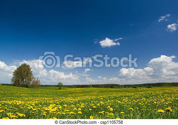 primavera, paisagem. - csp1105758