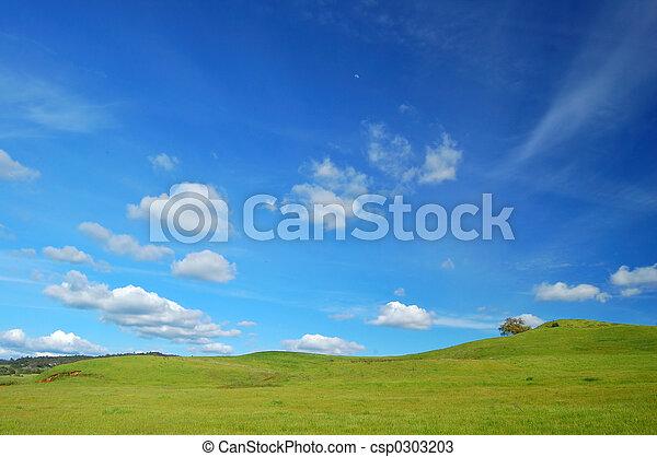 primavera, paisaje - csp0303203