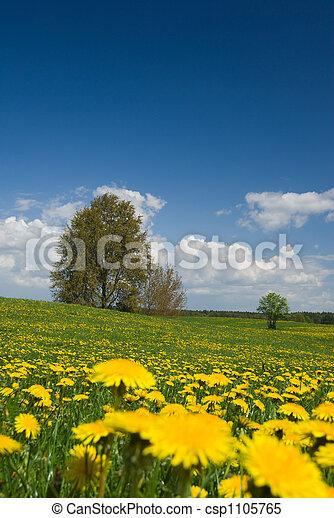 primavera, paisaje. - csp1105765