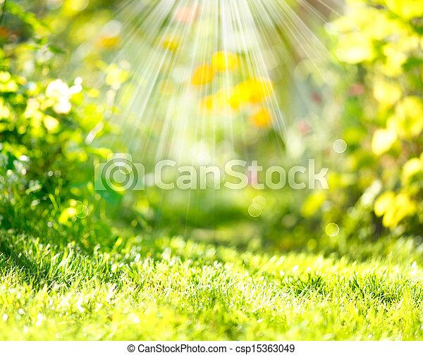 La primavera de la naturaleza nubló el fondo con rayos de sol - csp15363049