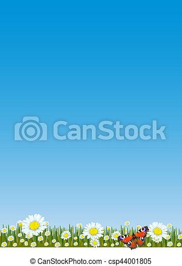 primavera, verão - csp44001805