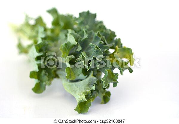 El primer plano del estudio de vegetales Kale sobre un fondo blanco - csp32168847