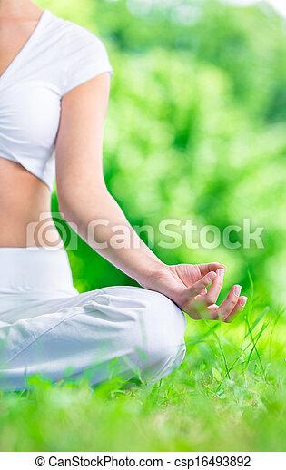 primer plano, zen, el gesticular, mano femenina - csp16493892