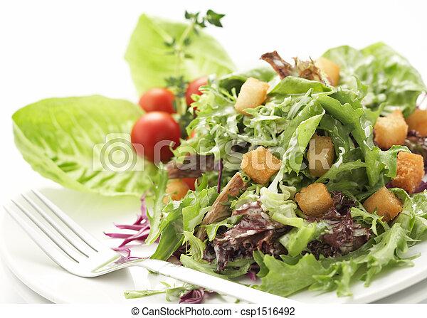 primo piano, insalata verde - csp1516492