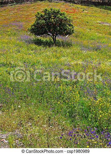 printemps, béatitude - csp1980989