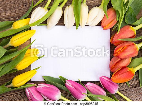 printemps, fond - csp8996345