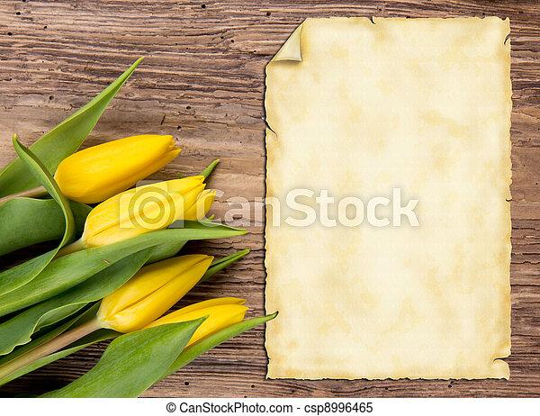 printemps, fond - csp8996465
