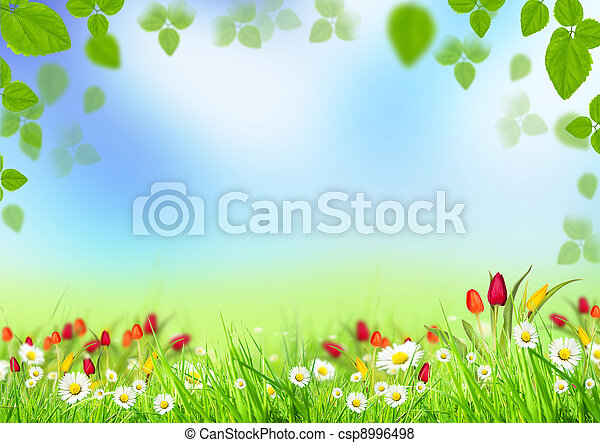 printemps, fond - csp8996498
