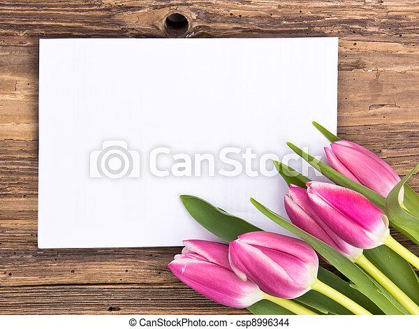 printemps, fond - csp8996344