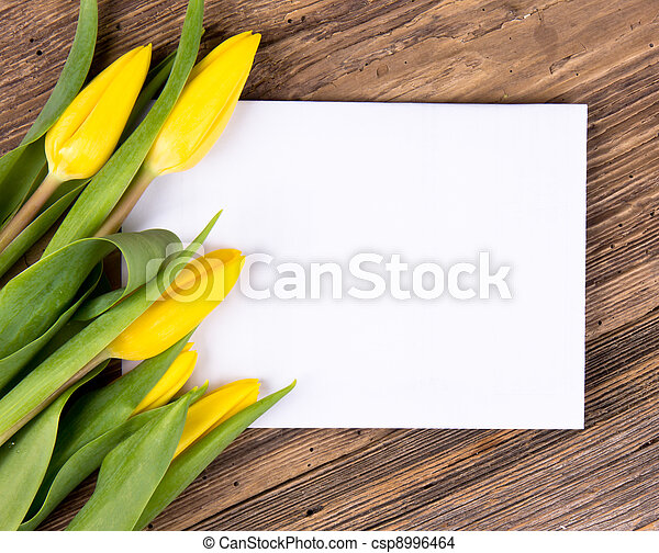 printemps, fond - csp8996464