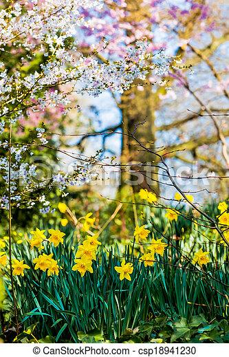 printemps, fond - csp18941230