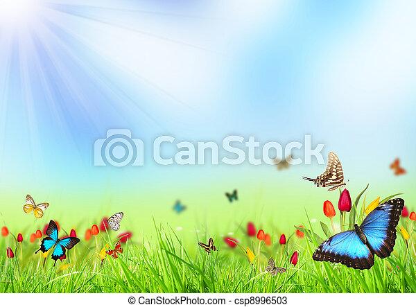 printemps, fond - csp8996503