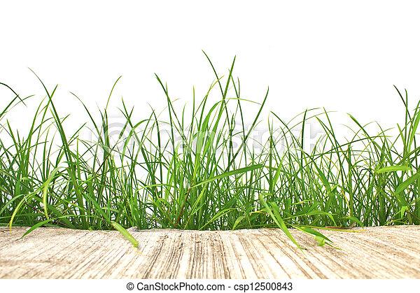 printemps, isolé, ciment, arrière-plan., vert, frais, blanc, herbe, route - csp12500843