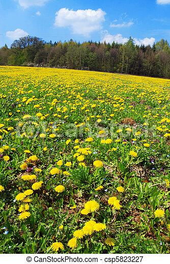 printemps, paysage - csp5823227
