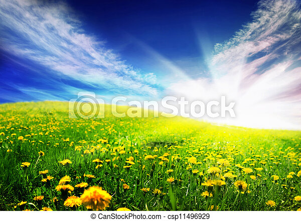 printemps, paysage - csp11496929