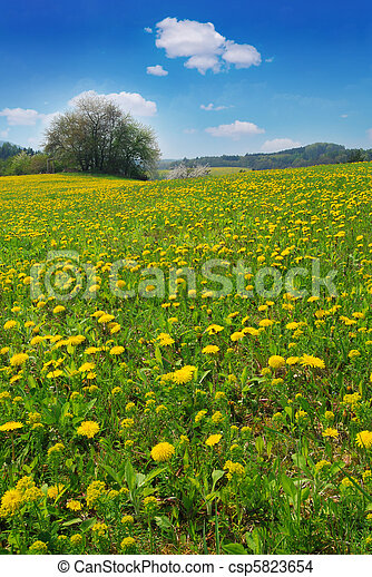 printemps, paysage - csp5823654