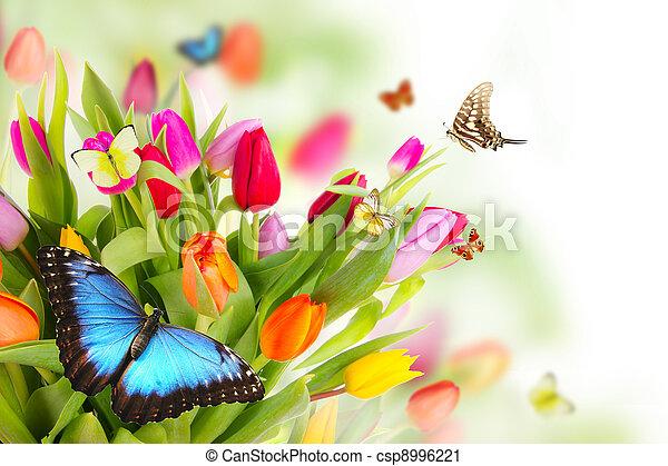 printemps, pré - csp8996221