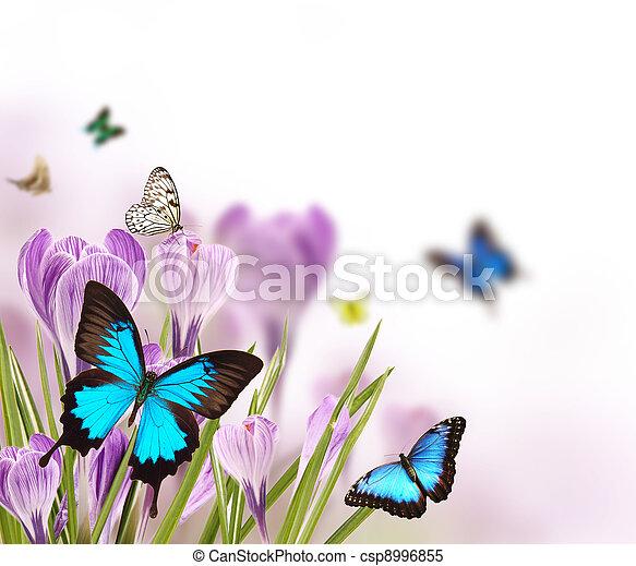 printemps, romance - csp8996855