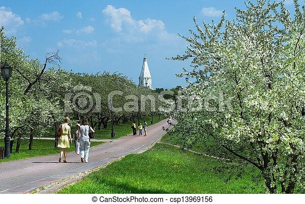 printemps, ville parc - csp13969156