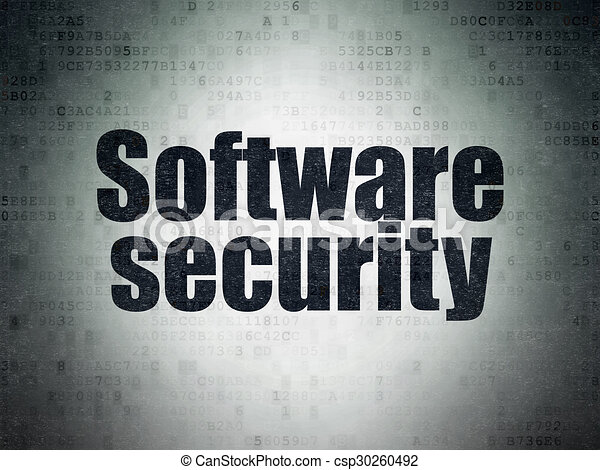Privacy concept: Software Security on Digital Paper background - csp30260492
