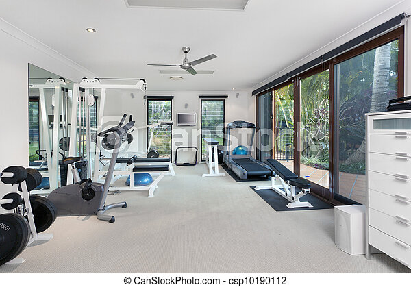 Private gym - csp10190112