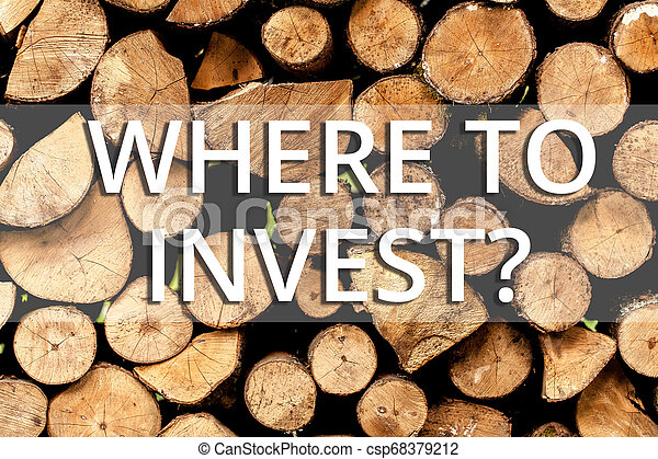 Una nota que muestra dónde invertir. Fotos de negocios que muestran preguntas sobre acciones o proceso de hacer más dinero de fondo de madera vintage mensajes de madera salvaje ideas de intenciones. - csp68379212