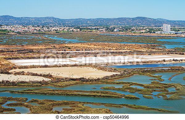 Production of sea salt in the Algarve region, Portugal. - csp50464996