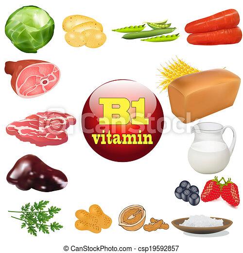 produits, vitamine b, une, origine, animal, plante - csp19592857