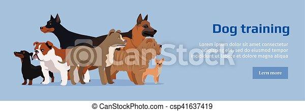De servicio para perros entrenamiento