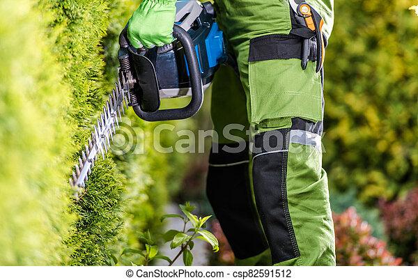Professional Gardener with Hedge Trimmer Doing His Job in the Garden - csp82591512