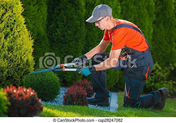 profi, munka, kertész - csp28247082