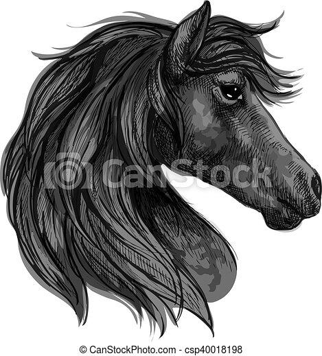 Profil portrait cheval noir t te profil cheval songeur yeux long pensif ondul noir - Profil dessin ...