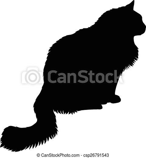 nero peloso micio apertocaldo ebano camma